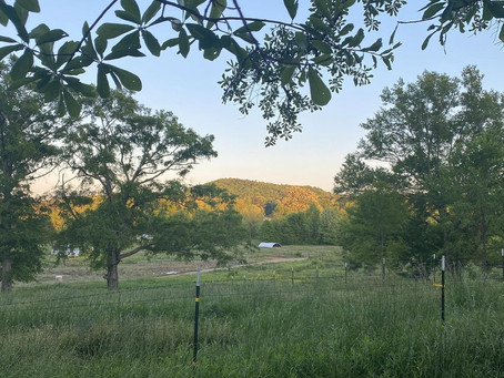 It's All About the Soil at Marble Creek Farmstead