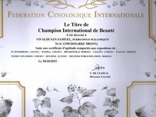 Получение диплома Интер Чемпиона