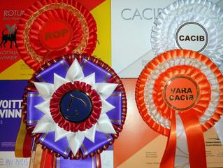 Helsinki Winner-2013! Nordic Winner-2013! Finnish Winner-2013!