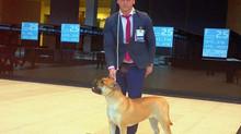 "INTERNATIONAL DOG SHOW CACIB FCI ""Nevsky Winner-2019"""
