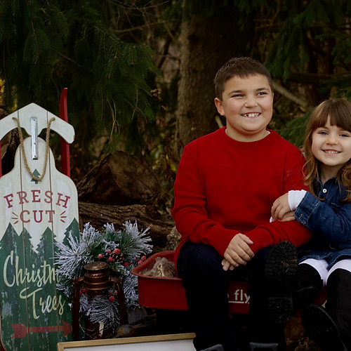 Hart - Christmas