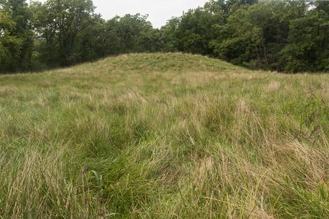 Mound [2541]
