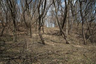 Mound [8500]