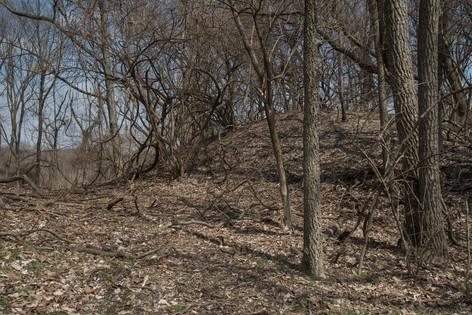 Mound [8518]
