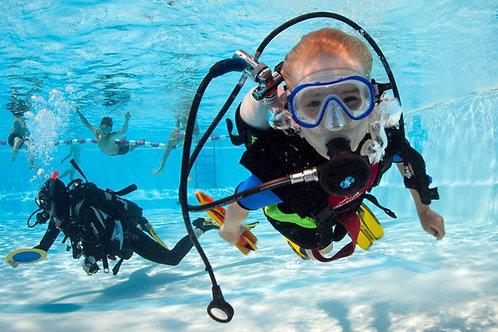 Индивидуальный курс, PADI Open Water Diver (referral)