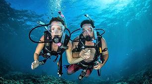 dive-tour-cairns-1260x700.jpg