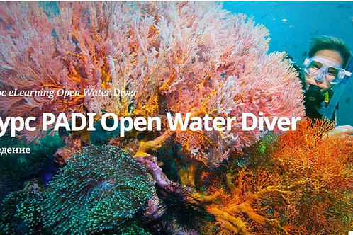 Open Water Diver - eLearning