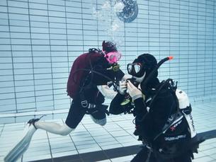 5 важных причин пройти курс PADI Rescue Diver