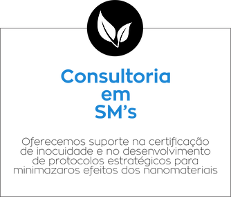 CTNANO - CONSULTORIAS 03.png