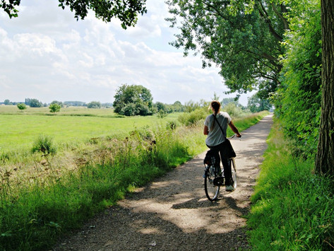 Beauty of east Holland - Top Veluwe things to do