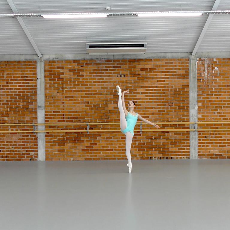 Développé Deconstructing Dance Workshop