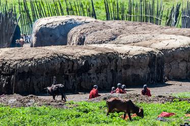 Masai vilage
