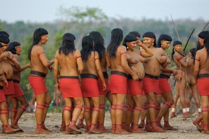 The honey festival / Enawene Nawe tribe