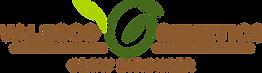 Valesco_Logo_Tag.png