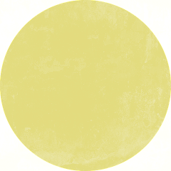 YellowCircle_edited_edited.png