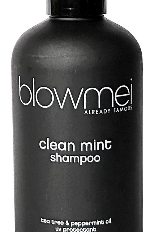 CLEAN MINT daily use shampoo