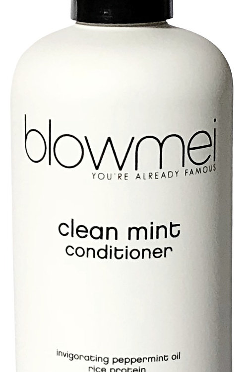 CLEAN MINT daily use conditioner