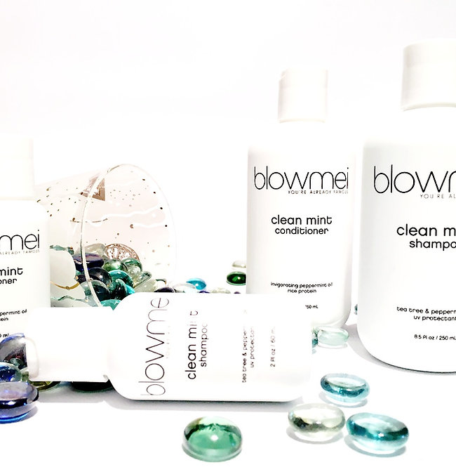 blowmei clean mint shampoo and conditioner bottles