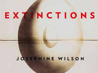 Book Review: Extinctions by Josephine Wilson