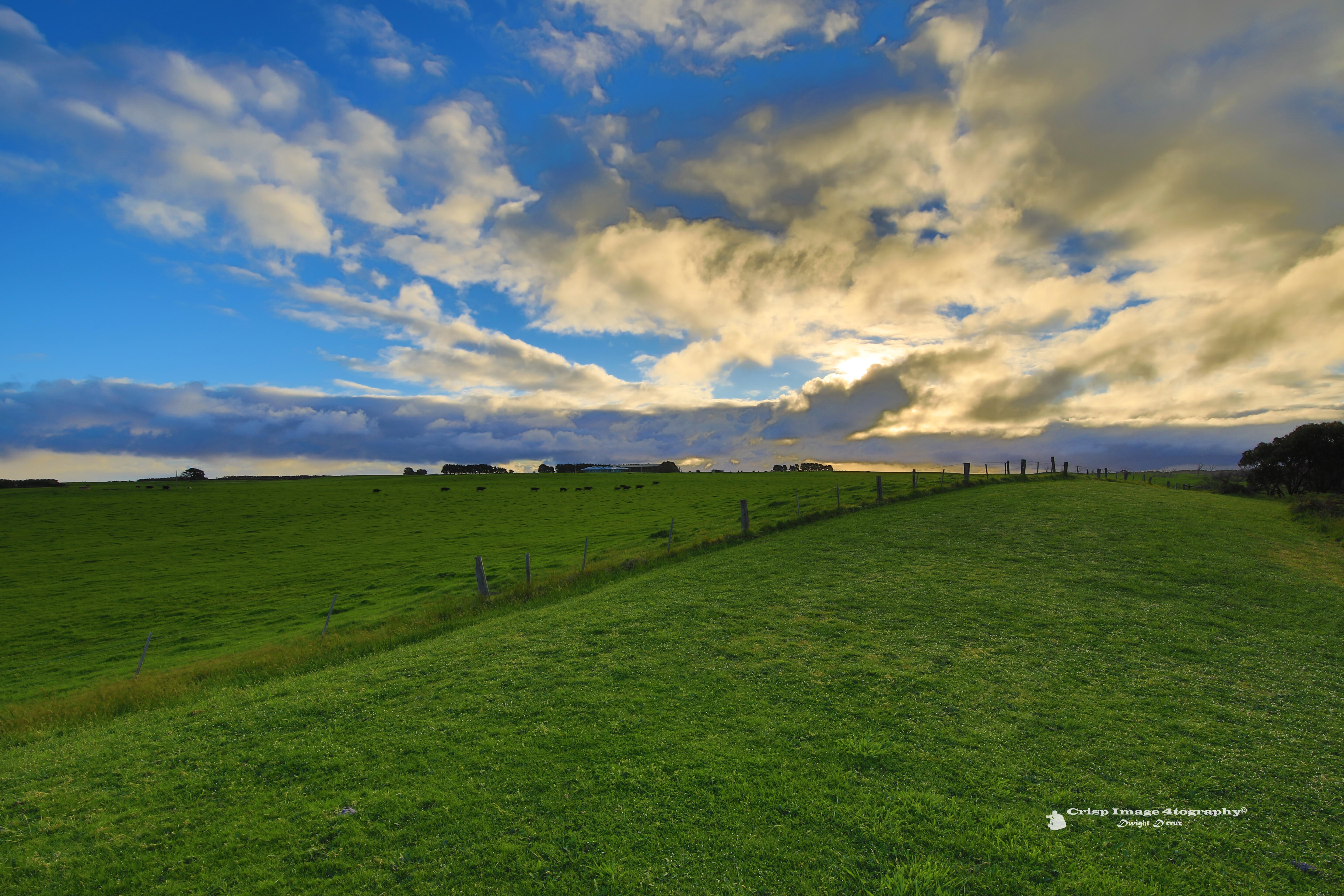 Inverloch Pasture