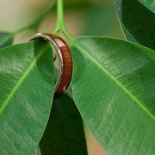 千年指環(屋久杉)5.5mm_5.5mm幅, 屋久杉 _ 千年指環, 年輪, 年