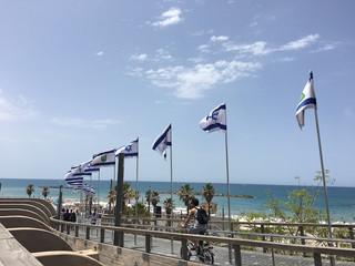 イスラエルのカルチャーを輸入し、ともにビジネスを創造する