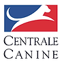 centrale canine.png