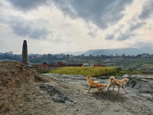 Dikesh Maharjan Nepal 25th-april-2.jpeg