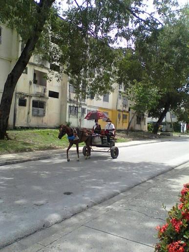Odisa Fuentes in Cuba.
