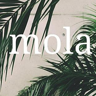 Mola Foto de Perfil - Mola Adm (1).jpg