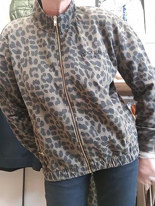 Blouson zipper French Terry Léopard 8572CLE