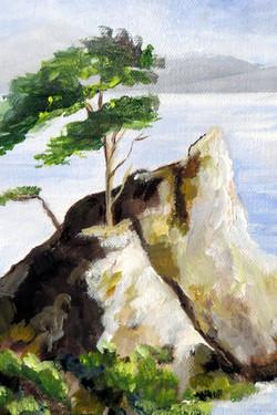 Lone Cypress, California Coast