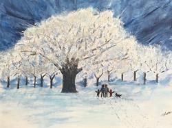 Winter Sparkle 2