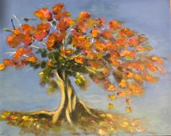 Flame Tree Diana Cruise