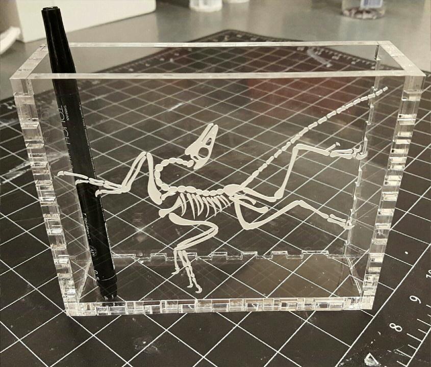 archeoptryx box