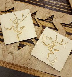 Archeoptryx coasters