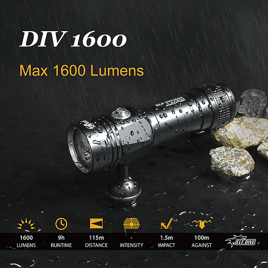 ELF-DIV1600