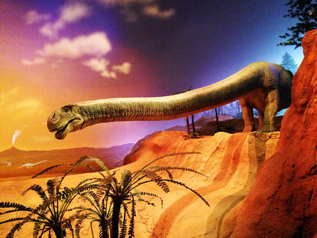 マメンチサウルス
