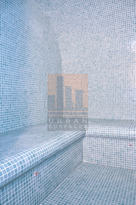 Mosaic Steam Room
