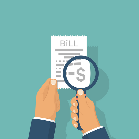 Legislative Testimony: The Role of the Local Option Sales and Use Tax