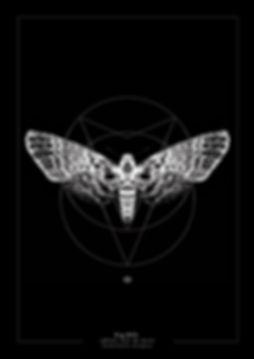 """Délicate Distorsion,Fig. XVI. """"Sphinx tête de mort"""" (Acherontia atropos) (Death's-head moth) Limited edition to 20 copies  Year 2014"""