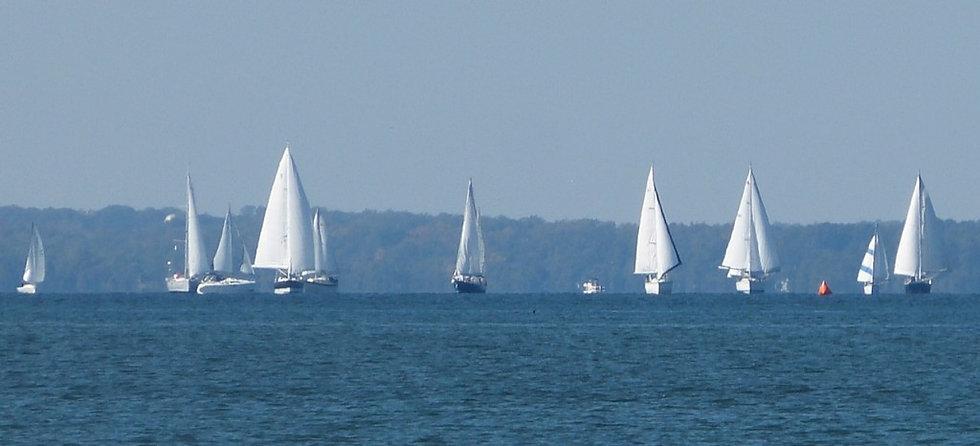 Sailboats1-1024x466.jpg