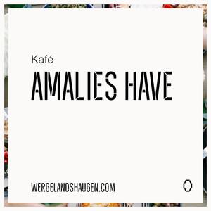 AMALIES HAVE