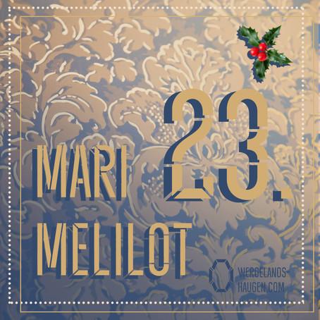 MARI MELILOT