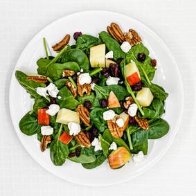 Apple Cranberry Salad with Pecans & Goat