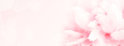 pastel-banner-with-pink-peony-flower-JYZ