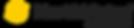 NorthVision logo