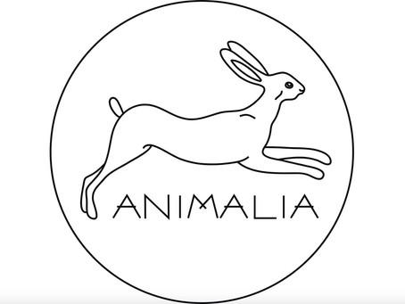 Grupo Animalia faz chamada para reuniões abertas