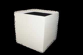 Emboldened Cube Series - Large