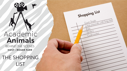 Academic Animals | Behind the Scenes - The Shopping List
